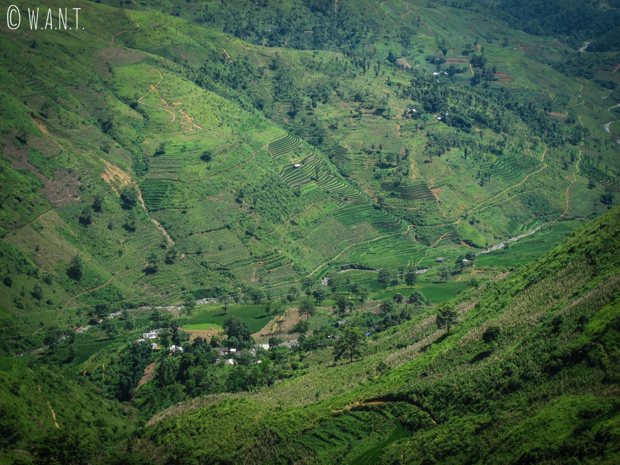 Vue plongeante sur les cultures en terrasses de la région de Meo Vac