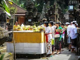 Offrandes au temple de Tirta Empul à Bali