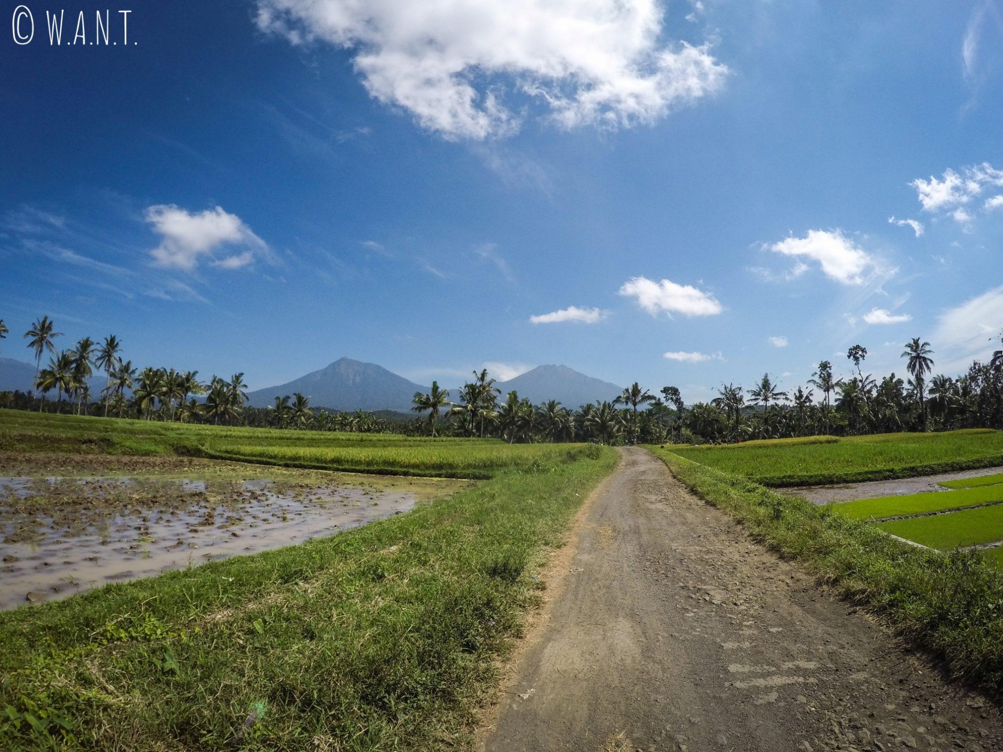 Paysage les volcans dont le Kawah Ijen depuis la route menant au village de Licin