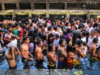 Sources sacrées de Tirta Empul à Bali