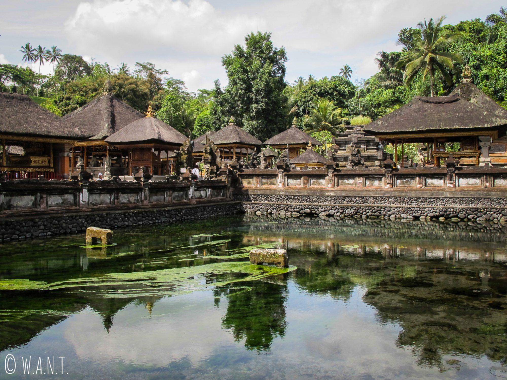 Temple de Tirta Empul à Bali