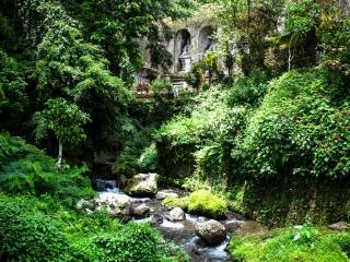 Vue sur les tombeaux de Gunung Kawi à Bali à travers la végétation