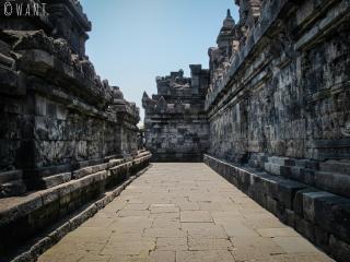 Coursive d'une terrasse du temple de Borobudur