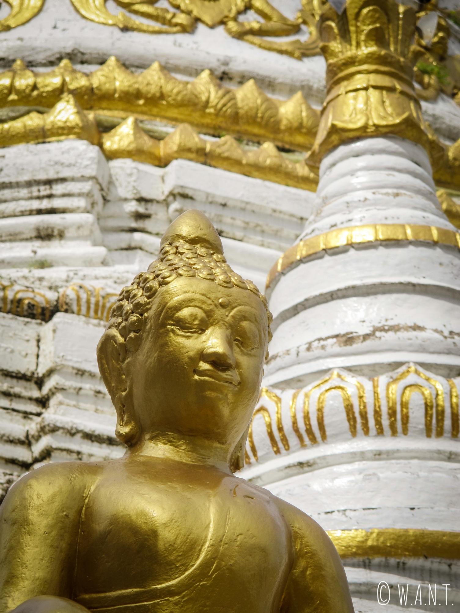 Gros plan sur une statue de Bouddha du Wat Luang de Pai