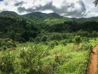 Le beau temps est finalement revenu pendant notre trek à Chiang Rai