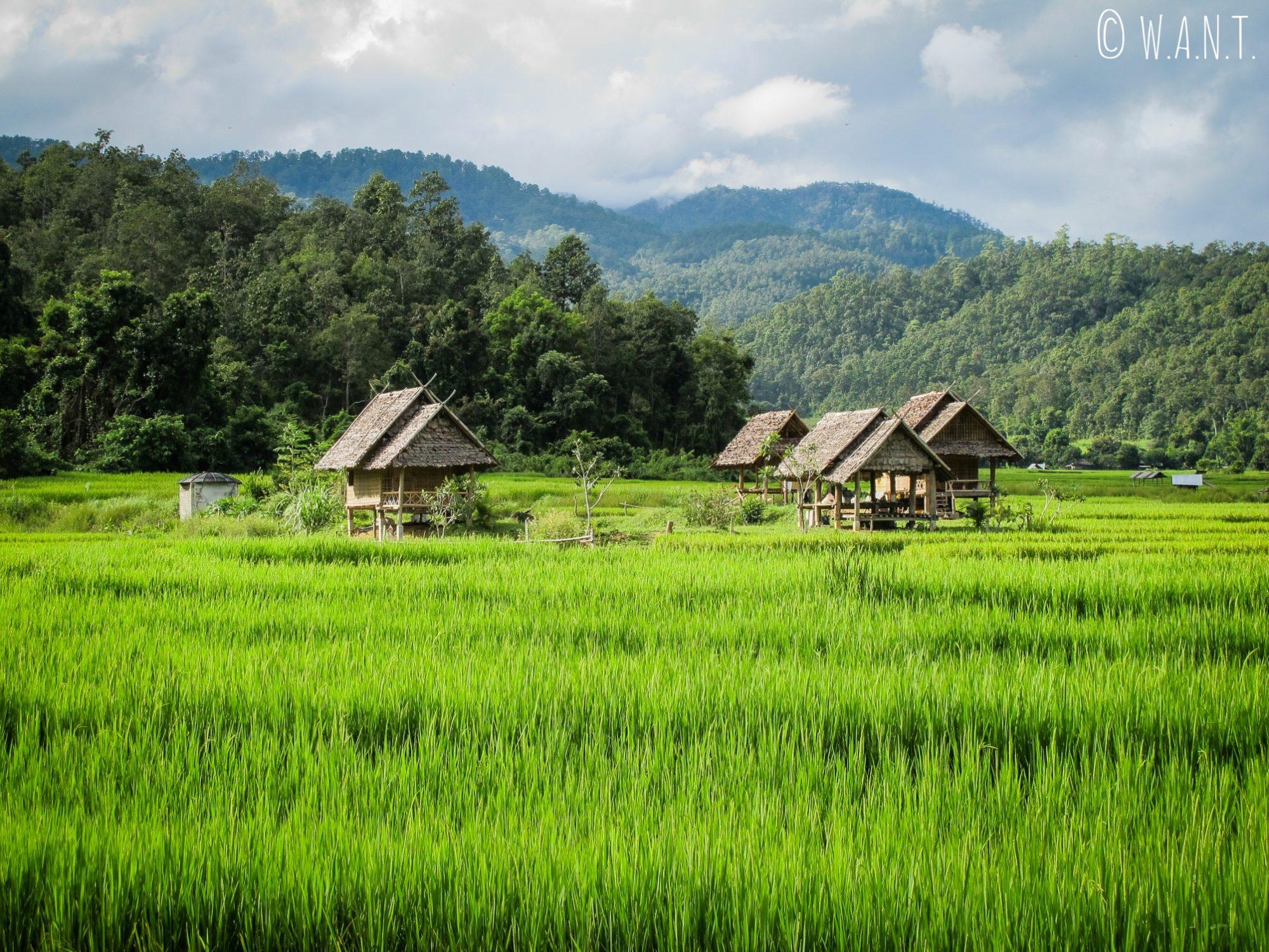 Le paysage depuis le Bambou Bridge est sublime