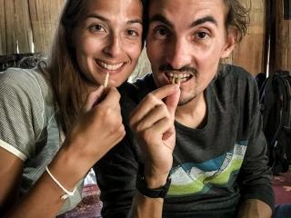 Nouveau défi réalisé, nous avons mangé des insectes en trek à Chiang Rai