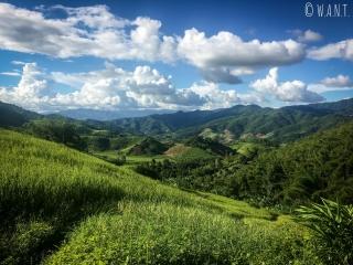 Paysage de rizières et montagnes pendant notre trek à Chiang Rai