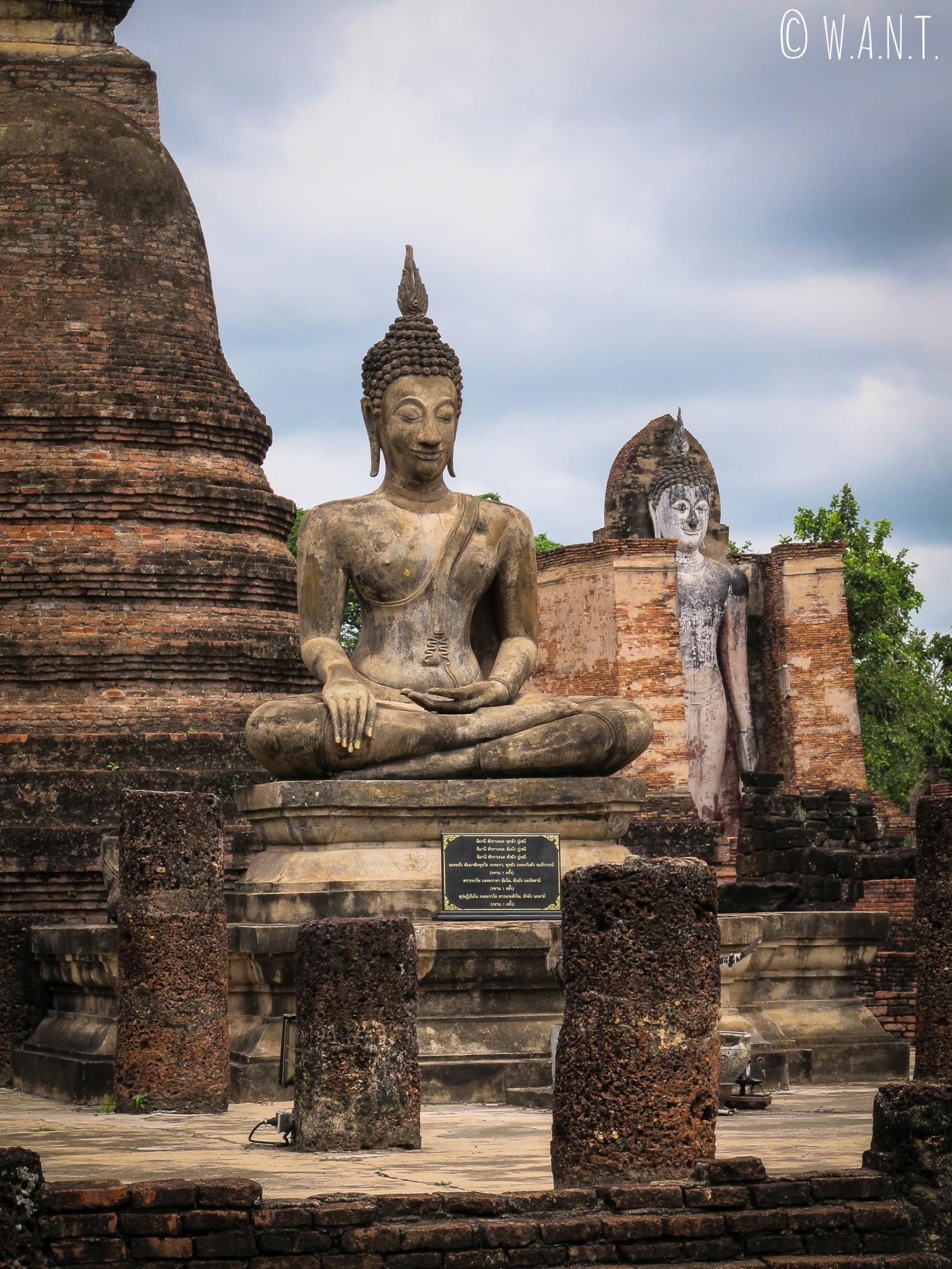 Statues de Bouddha au Wat Mahathat de Sukhothai