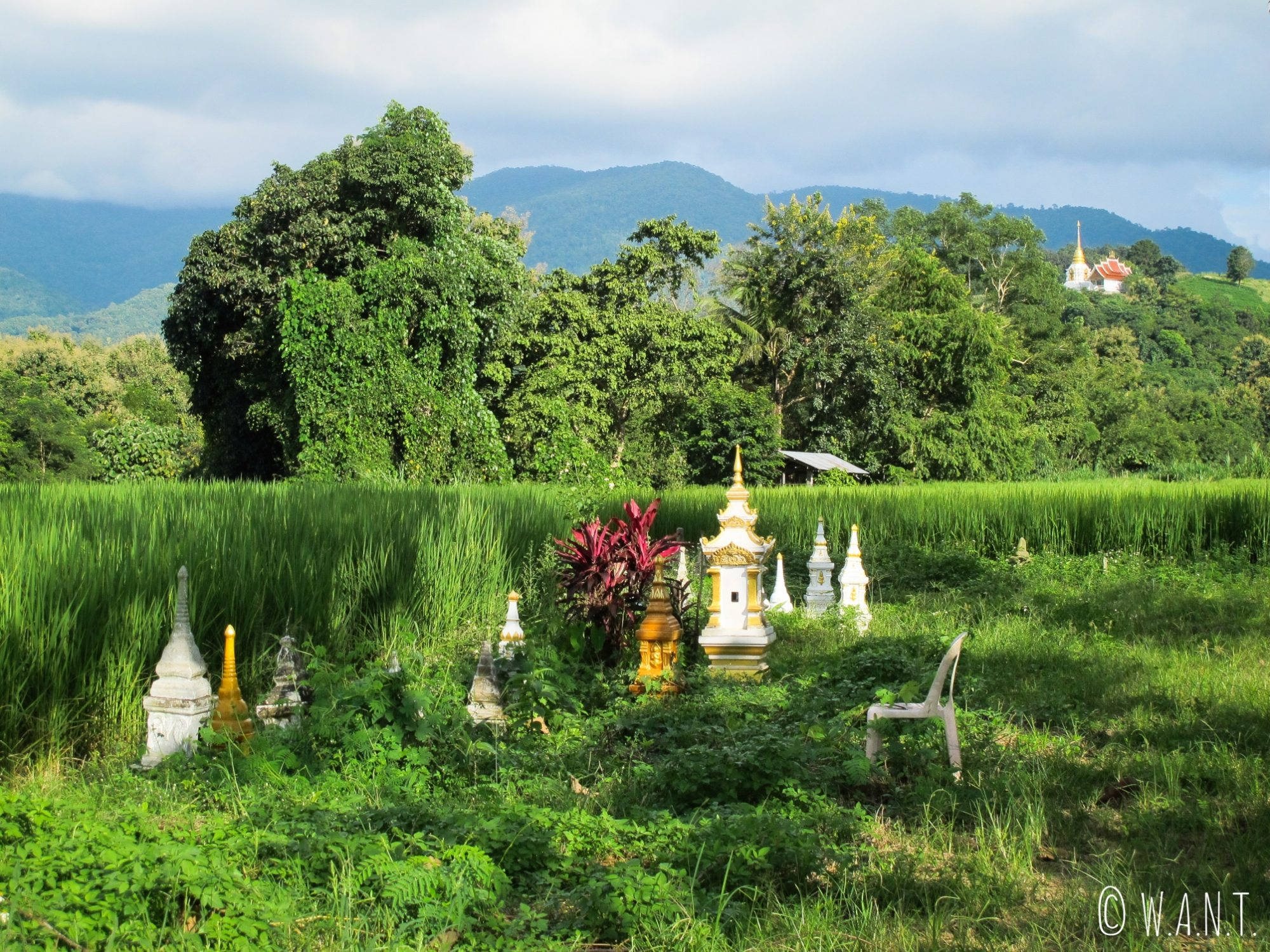 Temple sur la route entre le Triangle d'or et Chiang Khong