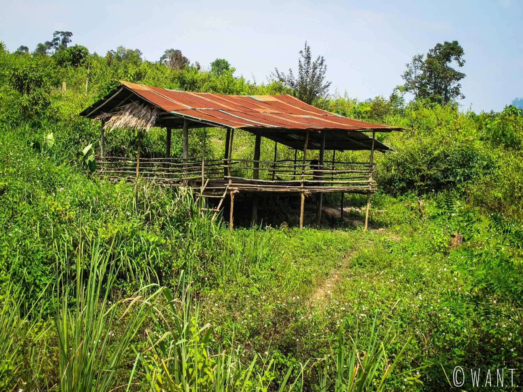 Abri dans les rizières sur la route de Konglor