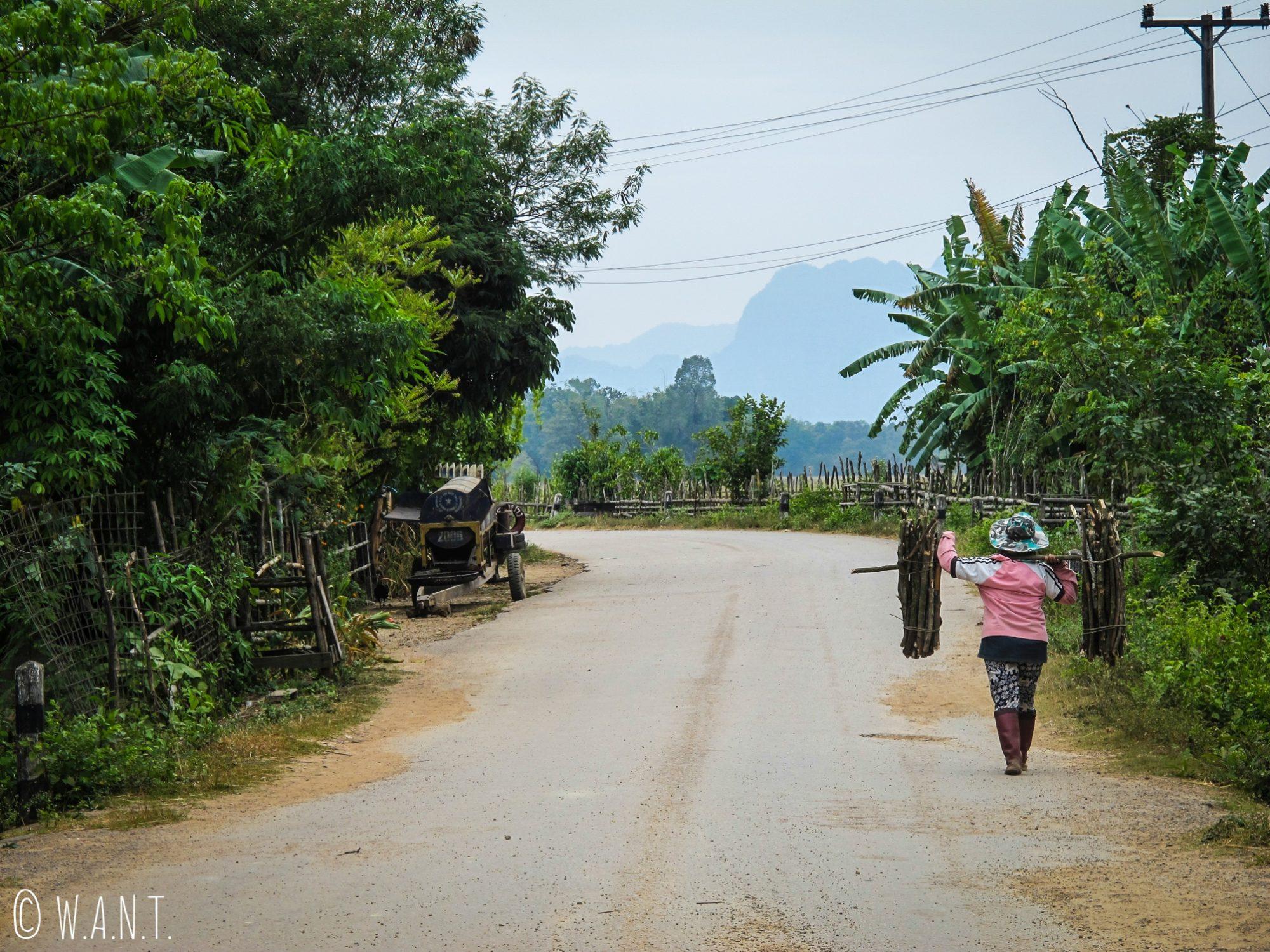 Agricultrice rapportant ses fagots de bois au village de Konglor