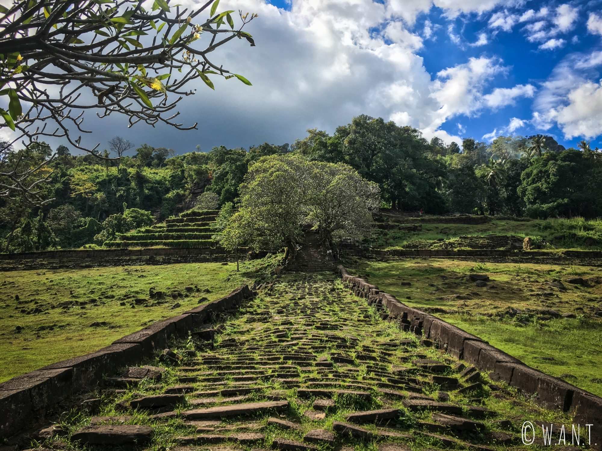 Allée grimpant jusqu'au sanctuaire de Vat Phou