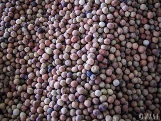 Gros plan sur des grains de poivre sur le marché de Muang Sing