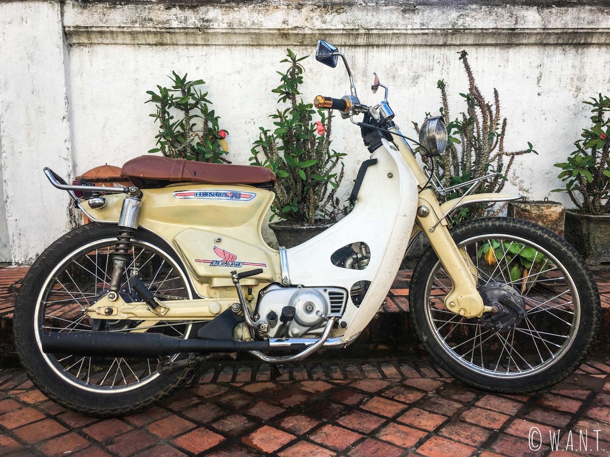 Honda Super Cub Deluxe dans les rues de Luang Prabang