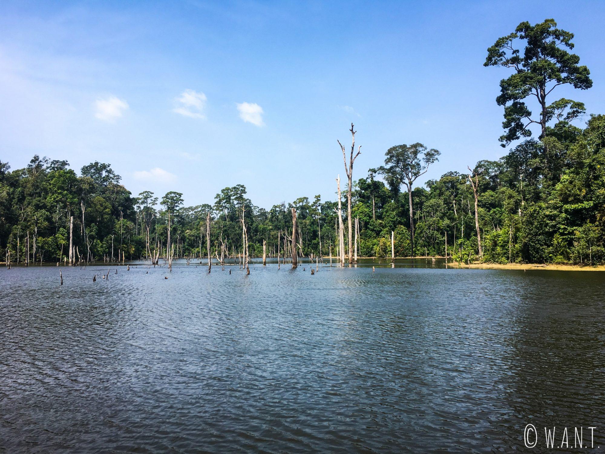 Le réservoir de la rivière Nam Theun a été créé suite à l'inondation de la région