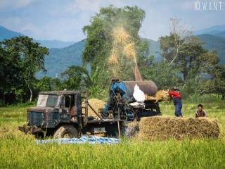 Machine agricole dans les rizières de Vang Vieng