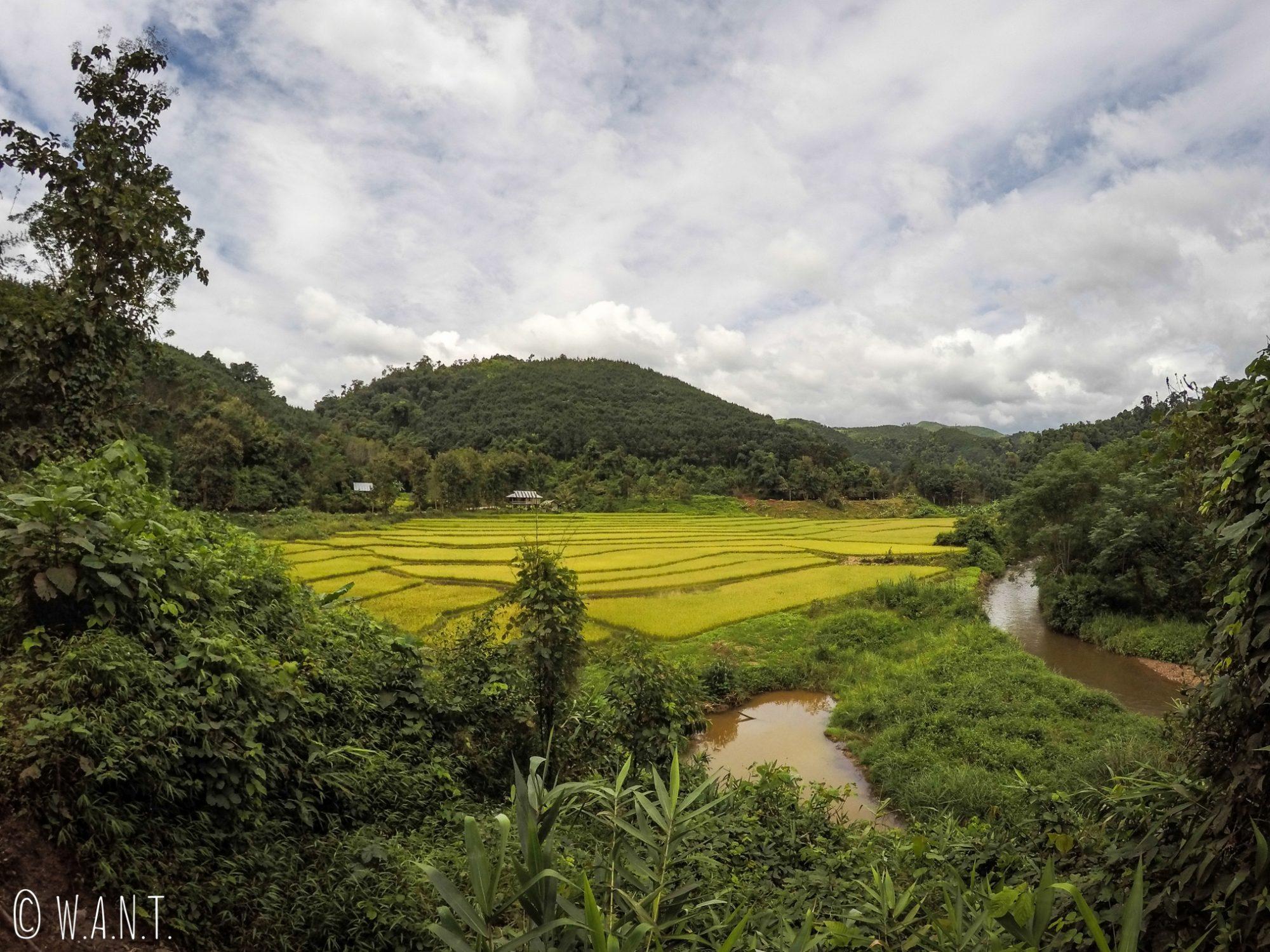 Magnifique paysage en bord de route entre Luang Namtha et Muang Sing