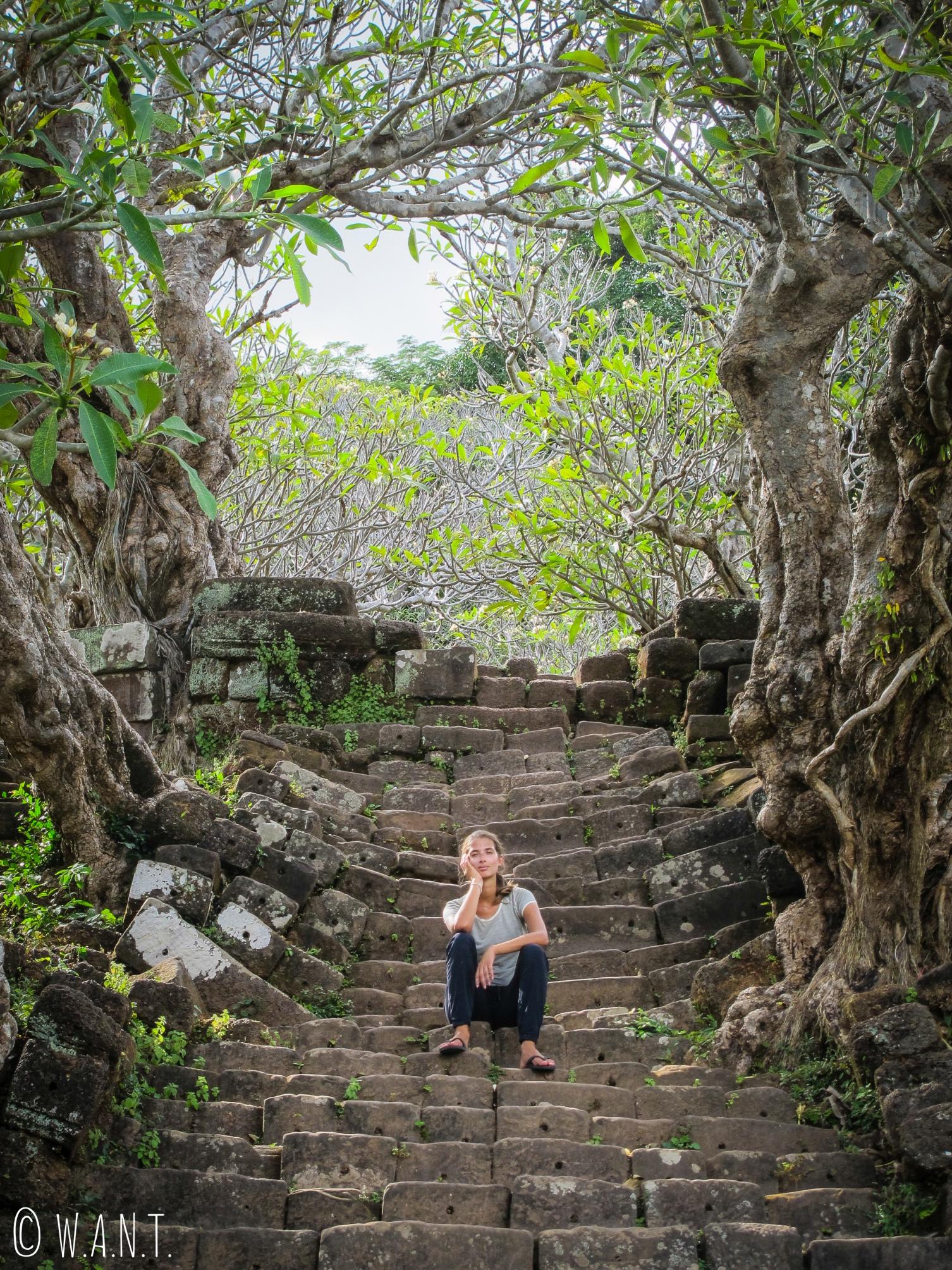 Marion dans les escaliers menant au sanctuaire de Vat Phou