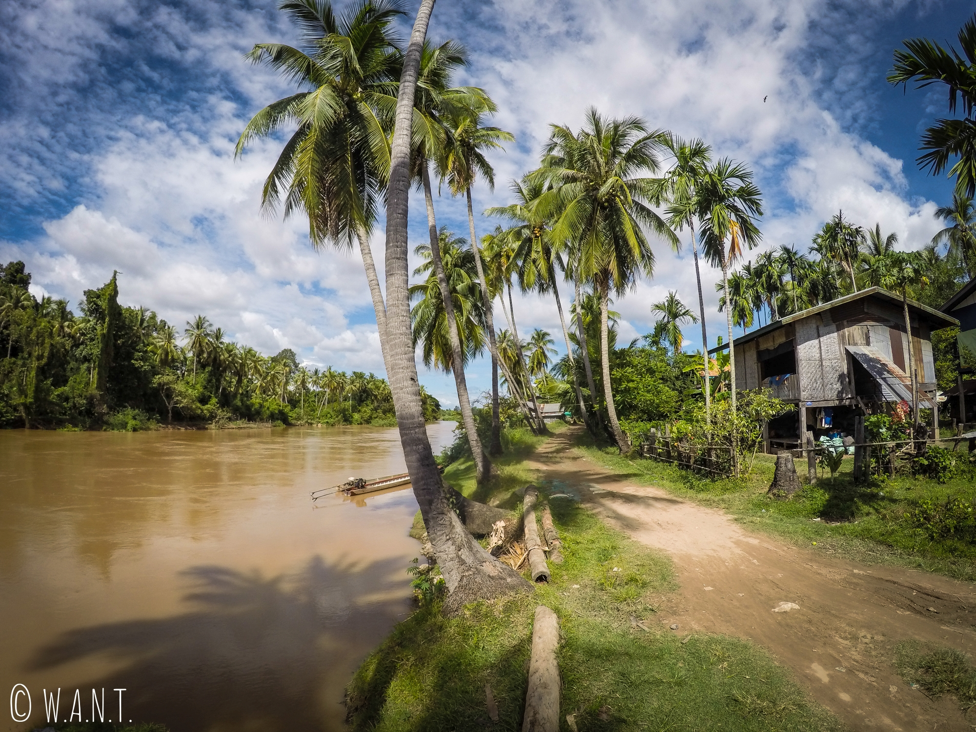 Palmiers et maison sur pilotis sur l'île de Don Khon