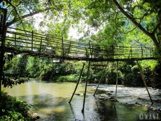 Pont en bambou pour traverser la rivière à Muang Ngoi