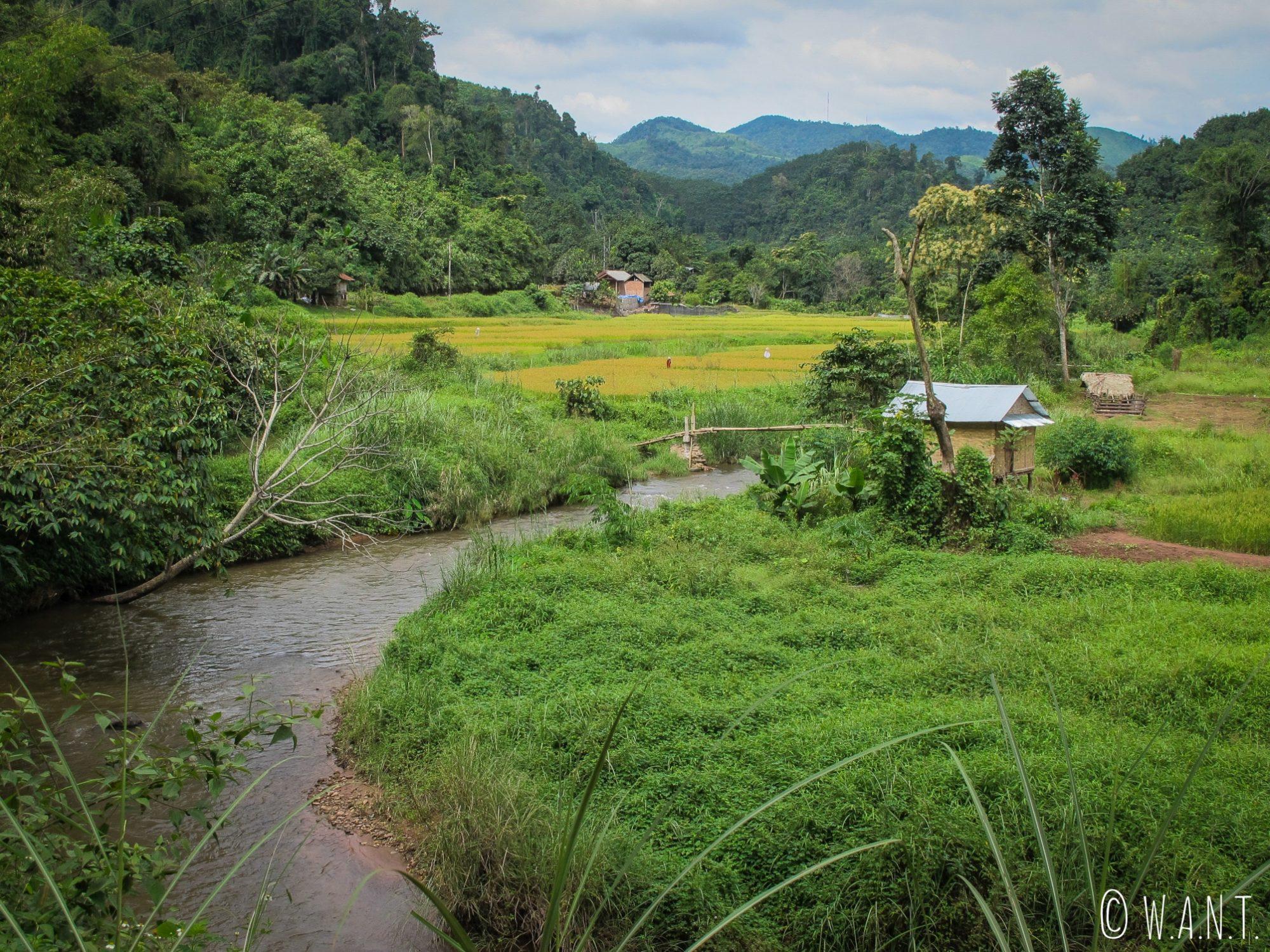 Rizières, cours d'eau et cabanes près de Luang Namtha