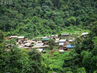 Village niché dans la végétation entre Luang Namtha et Muang Sing