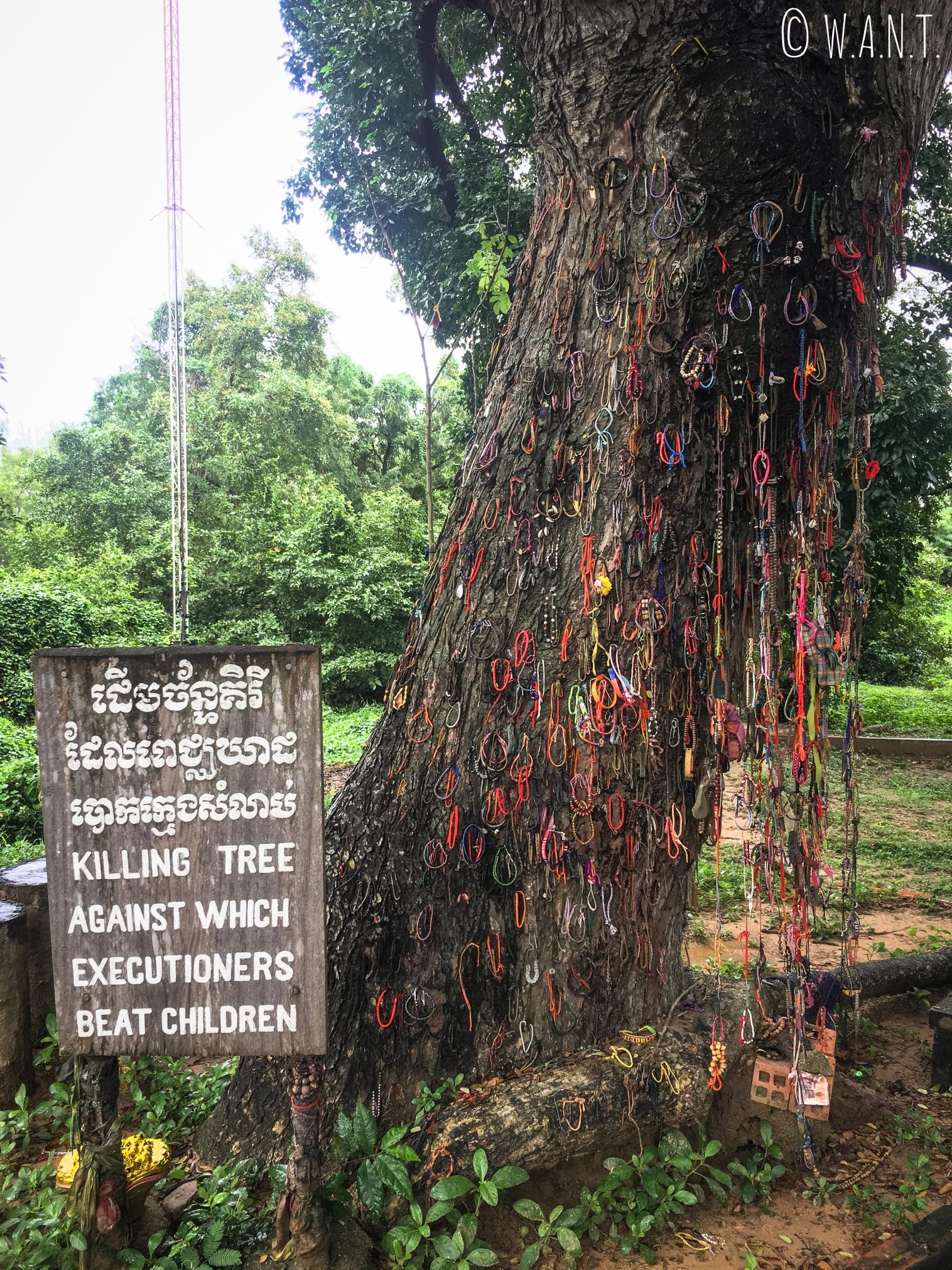 Arbre servant à tuer les bébés aux Killing Fields de Phnom Penh