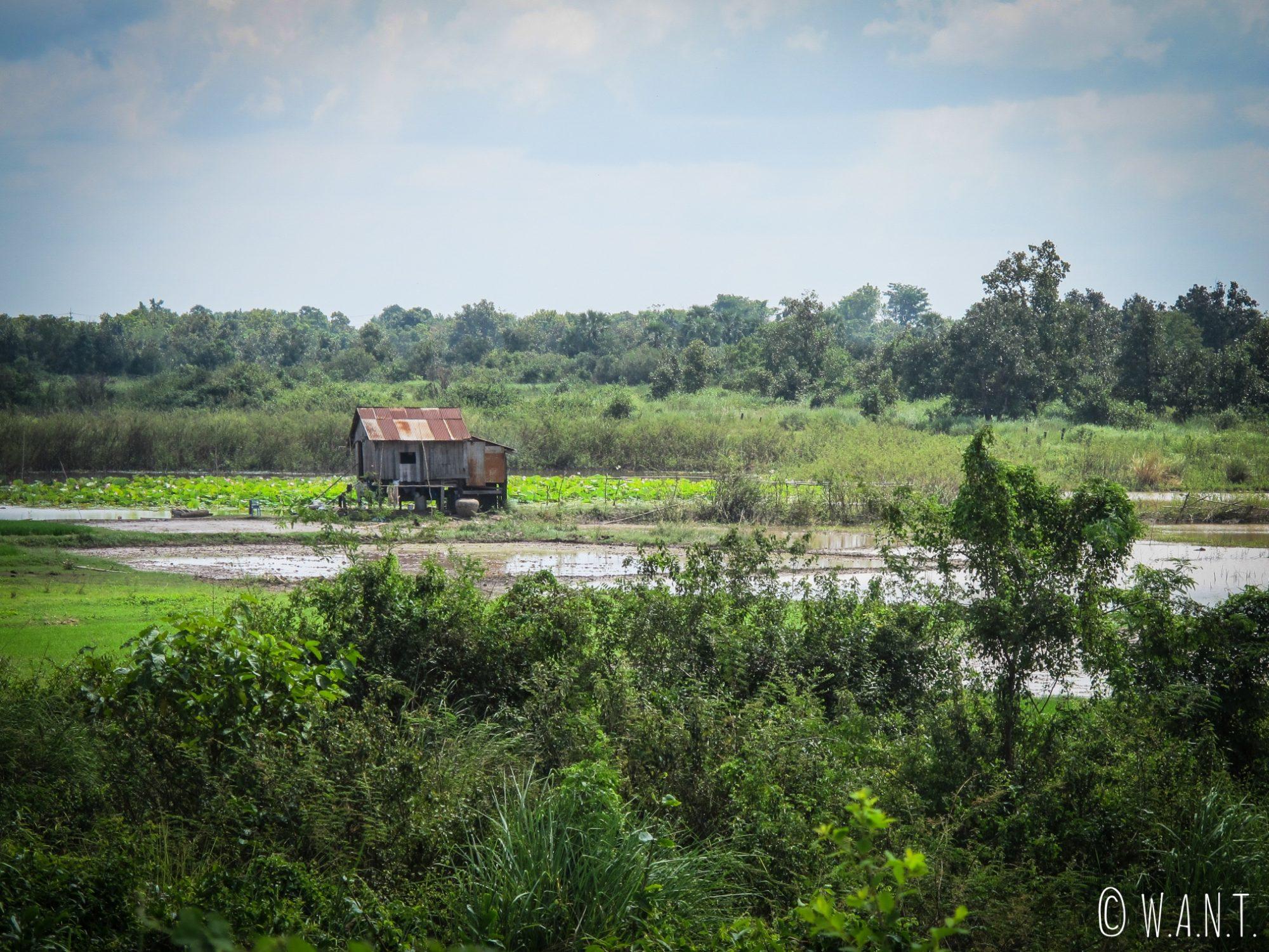 Cabane sur la route entre Kratie et Kampi