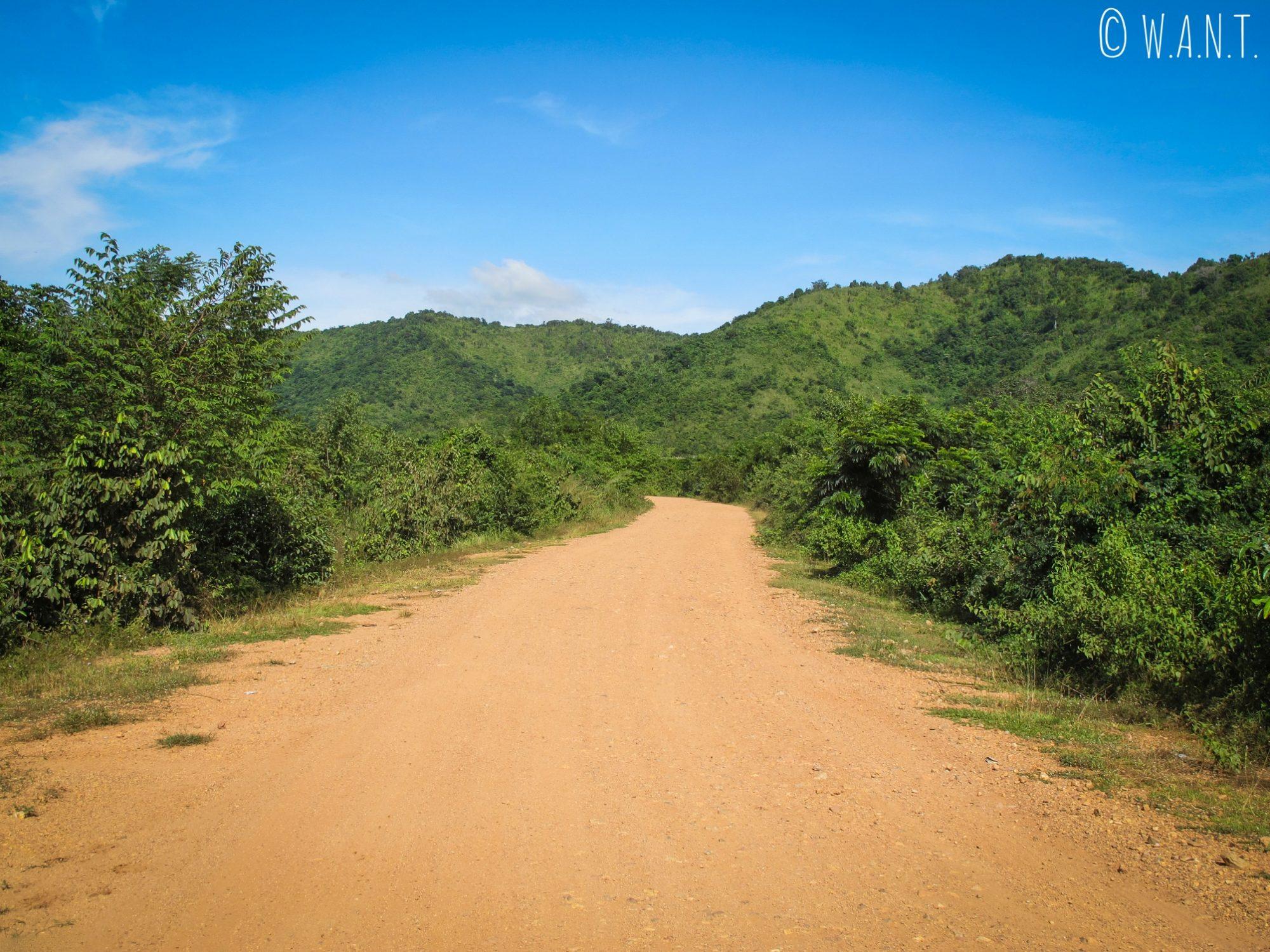 Chemin à travers la végétation pour accéder à la plantation de poivre de Kampot
