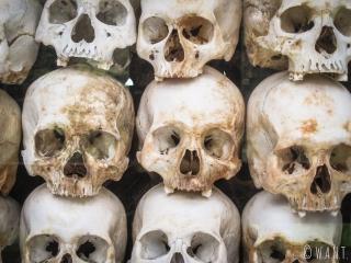 Crânes de victimes exhumés aux Killing Fields de Phnom Penh