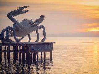 Crabe géant de la ville de Kep et coucher de soleil