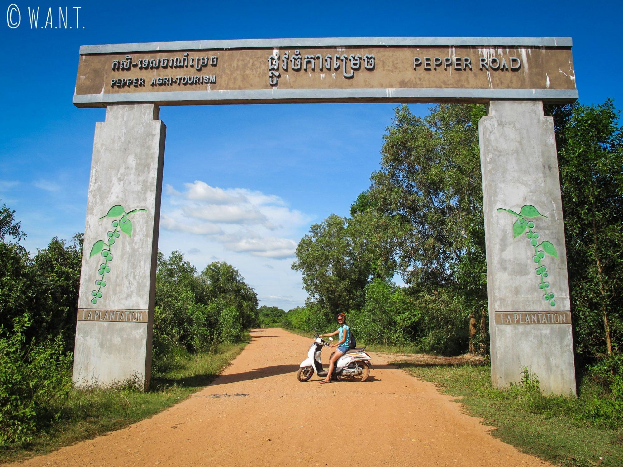En route pour notre visite de plantation de poivre de Kampot