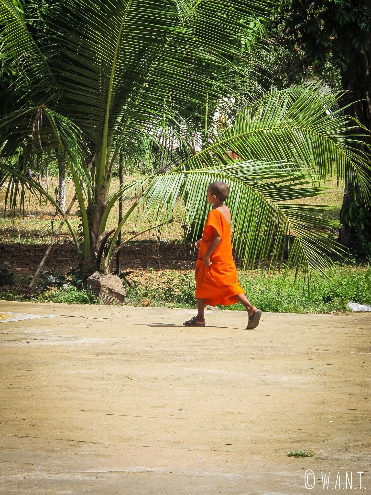 Jeune moine sur la route entre Kratie et Kampi