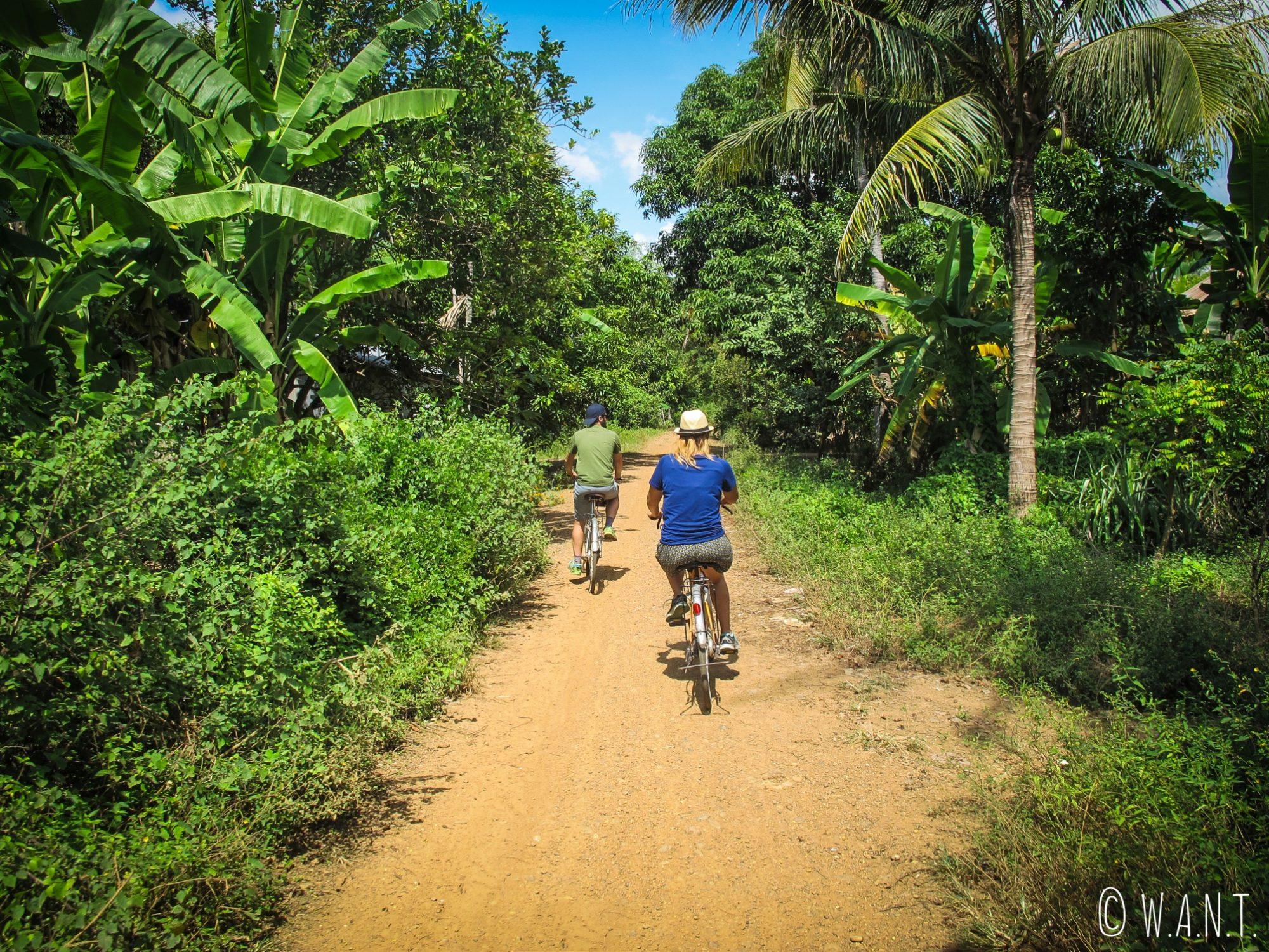 Nous parcourons la route entre Kratie et Kampi à vélo
