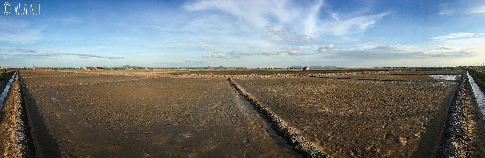 Panorama sur les marais salants de Kampot