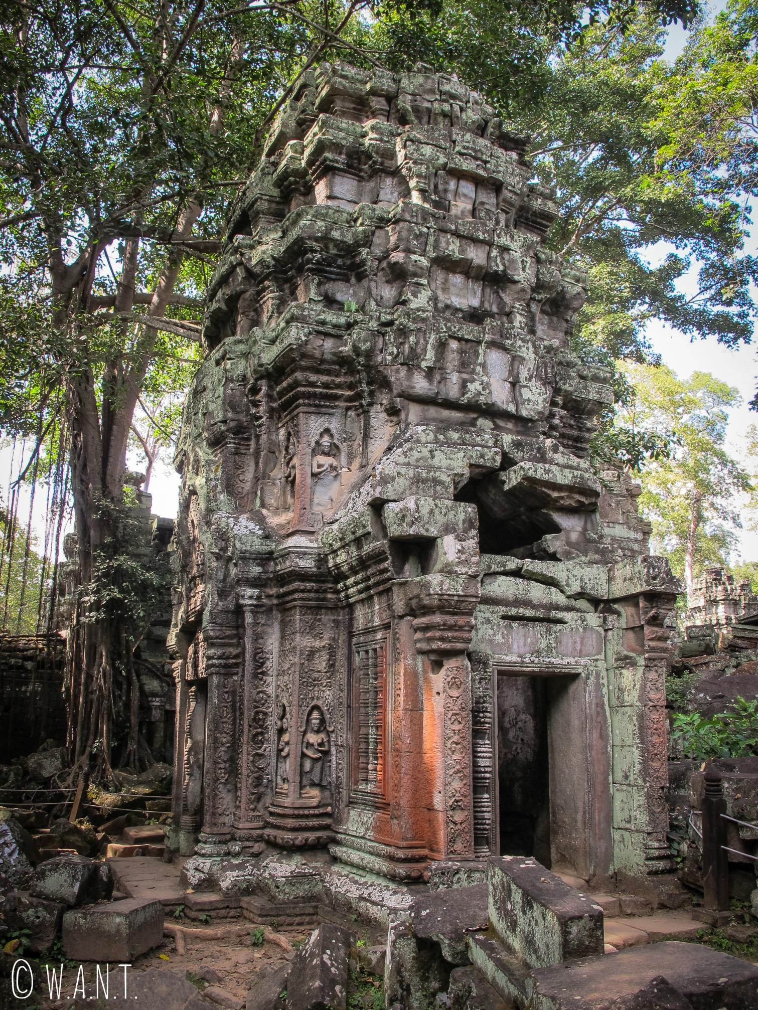 Tour du temple Ta Phrom à Angkor