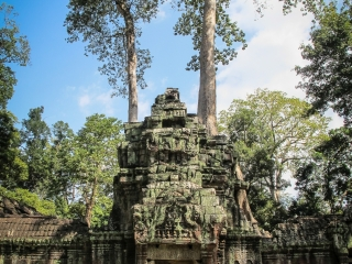 Tour du temple Ta Phrom sur le site archéologique d'Angkor