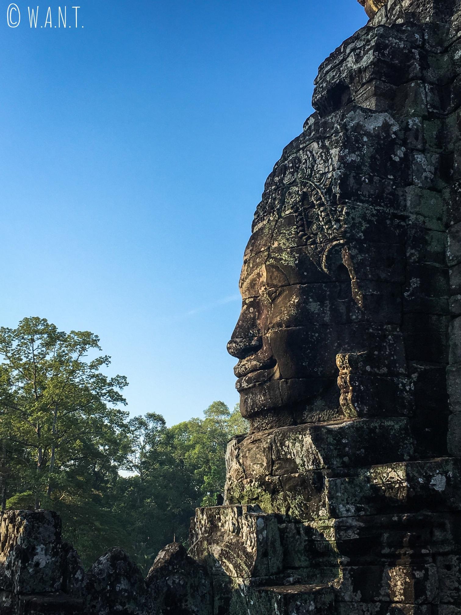Visage du temple Bayon et végétation