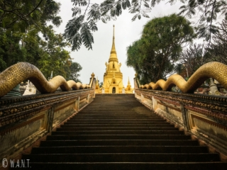 Escaliers et stupa doré au Wat Sila Ngu sur l'île de Koh Samui