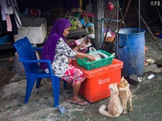 Marchande de rue dans le village musulman de Koh Samui