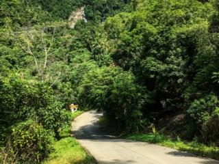 Route d'accès aux cascades de Namuang à Koh Samui