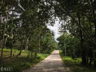 Route sauvage au centre l'île de Koh Samui
