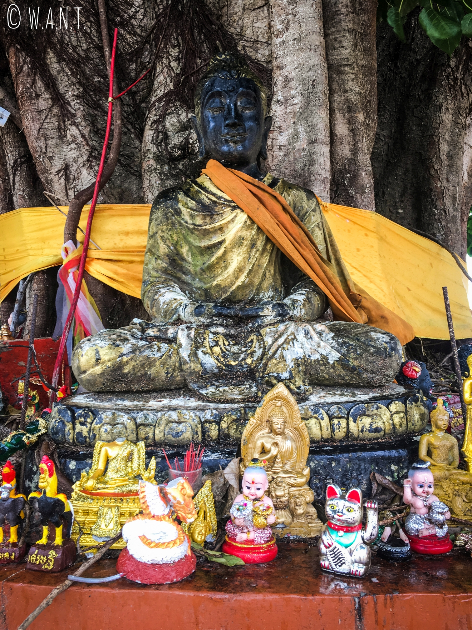 Statue de Bouddha au Wat Sila Ngu sur l'île de Koh Samui
