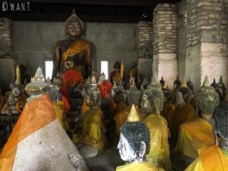 Statues de Bouddha au Wat Samret de Koh Samui