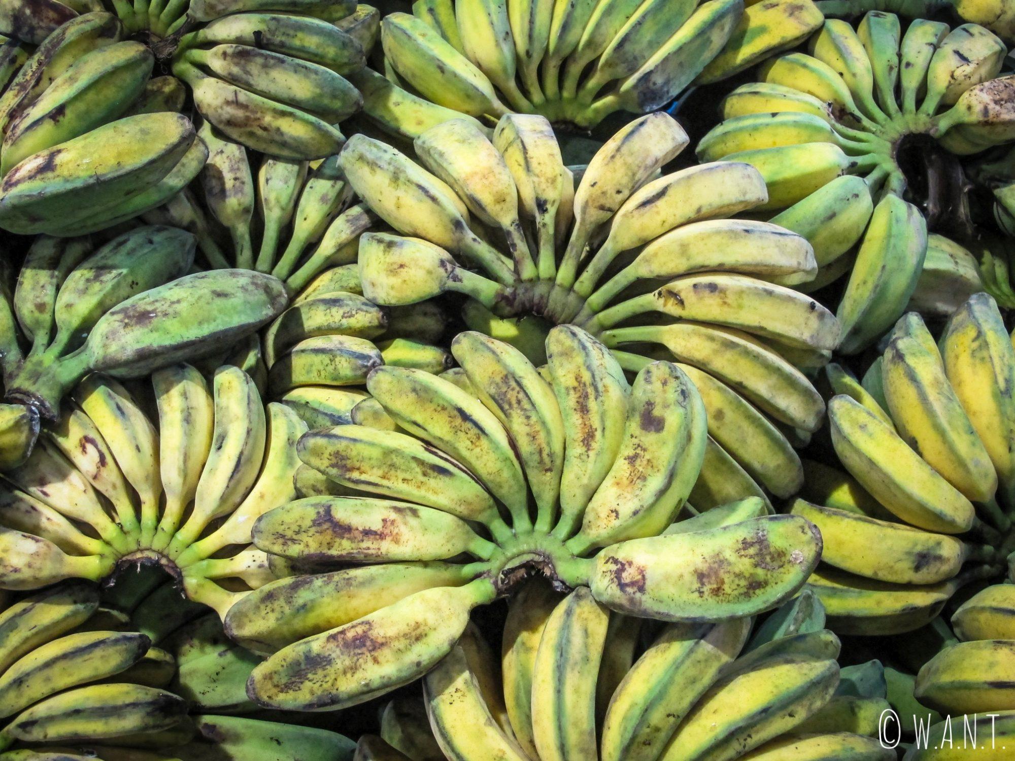 Bananes au marché Kianggeh de Bandar Seri Begawan
