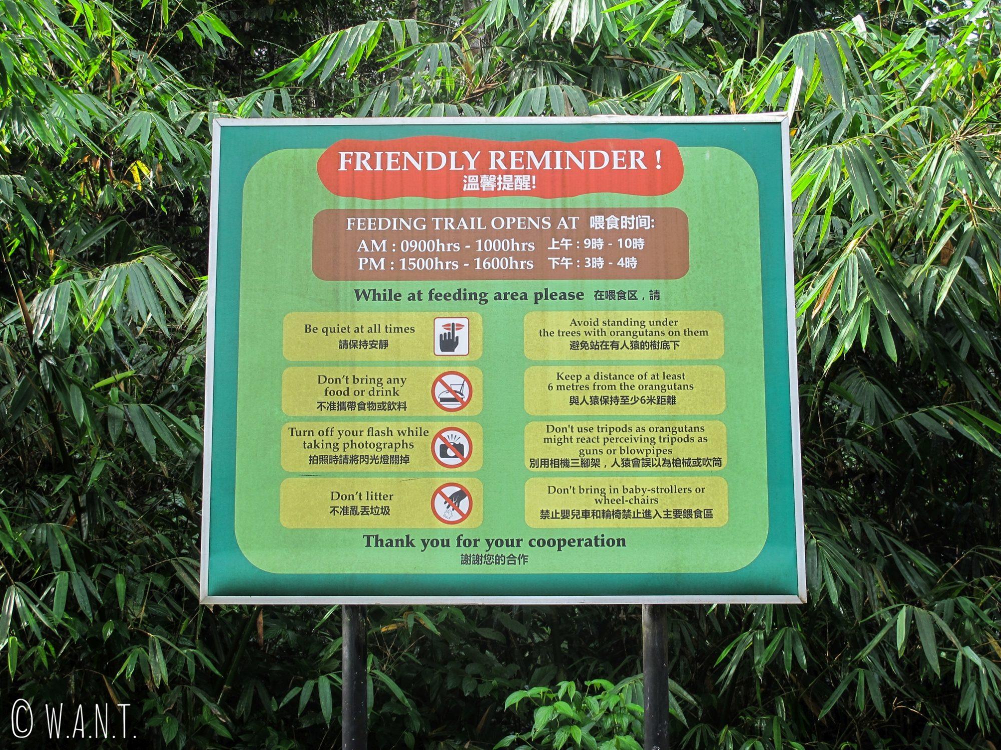 Horaires d'accès pour observer les orangs-outans au Semenggoh Nature Reserve