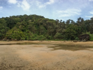 Plage du trail numéro 3 Telok Pacu au Bako National Park