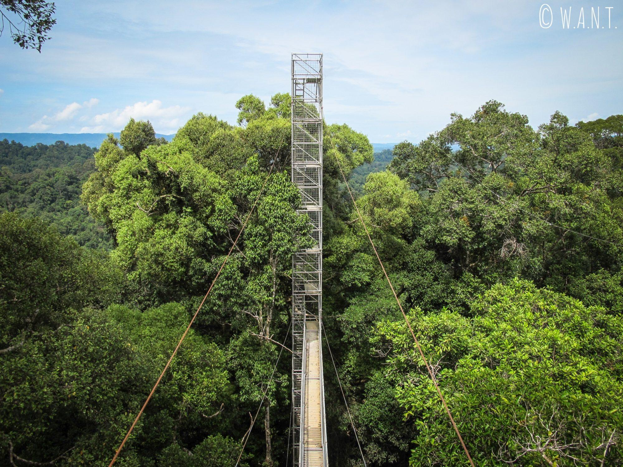Pont suspendu du Parc national Ulu Temburong au Brunei