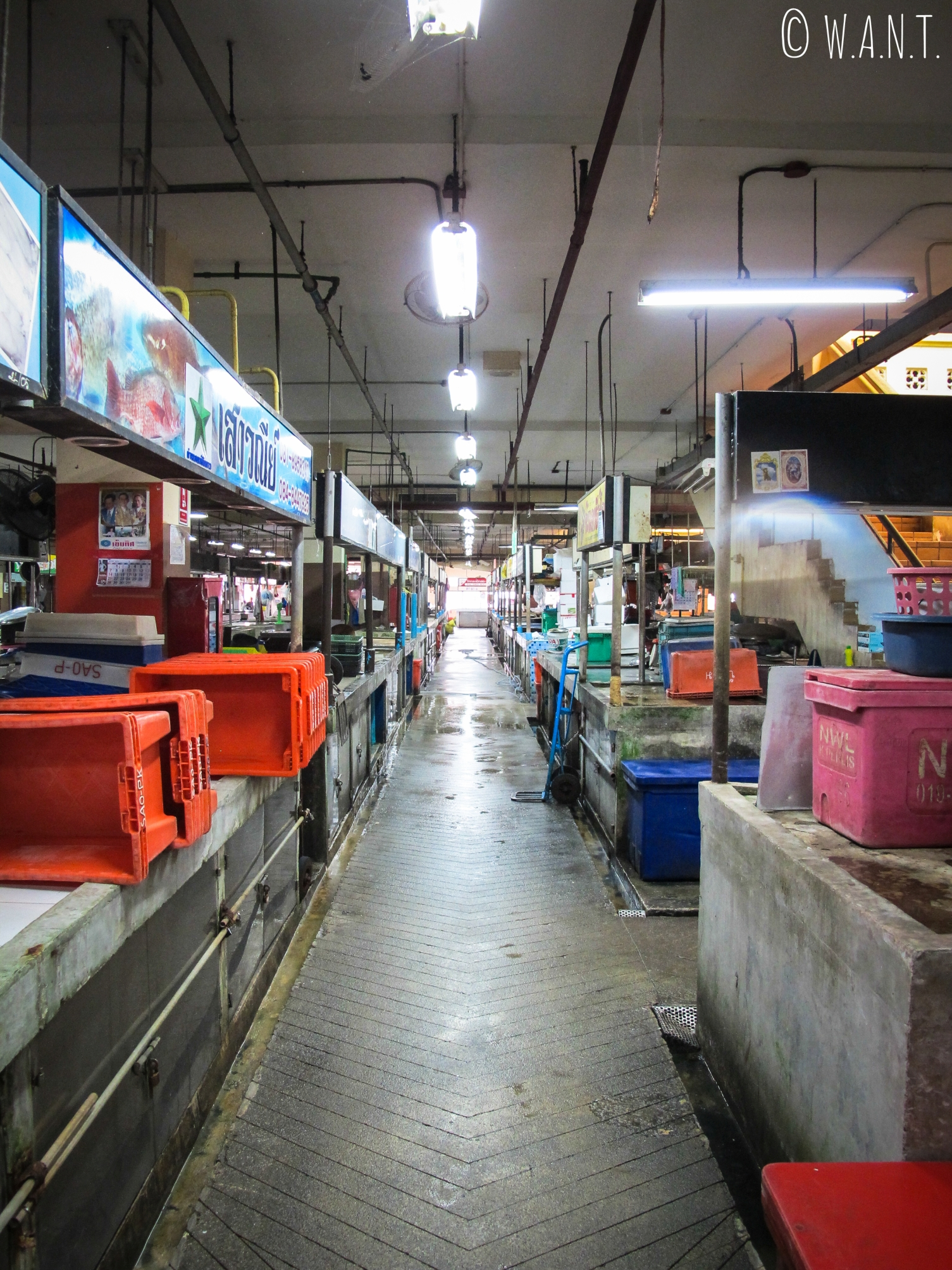 Stands de poissons au marché couvert du vieux Phuket